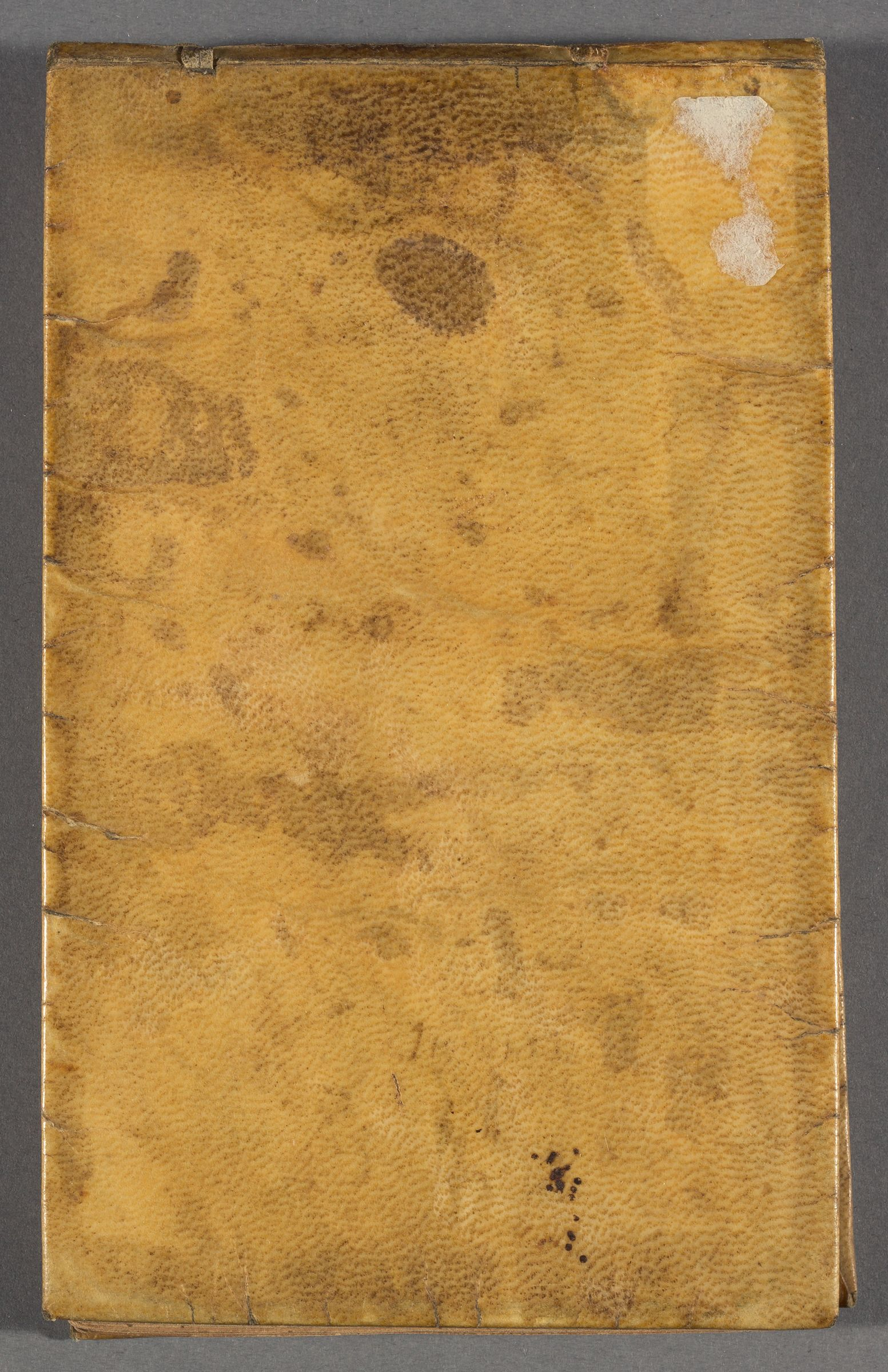 Sermon notes compiled by Warham Williams, 1716-1718