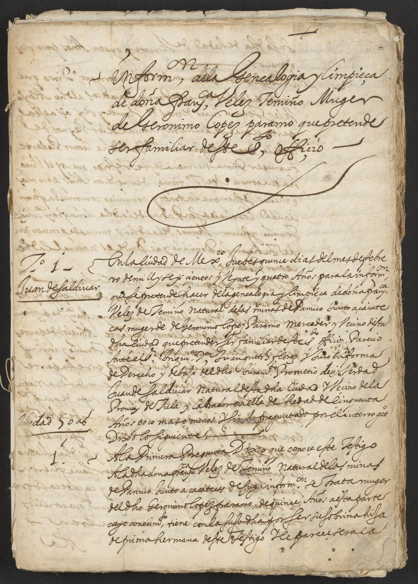 "Inquest of the genealogy and ""limpieza de sangre"" of Doña Francisca Veles de Temiño, wife of Geronimo Lopez Paramo, 15 February 1624."