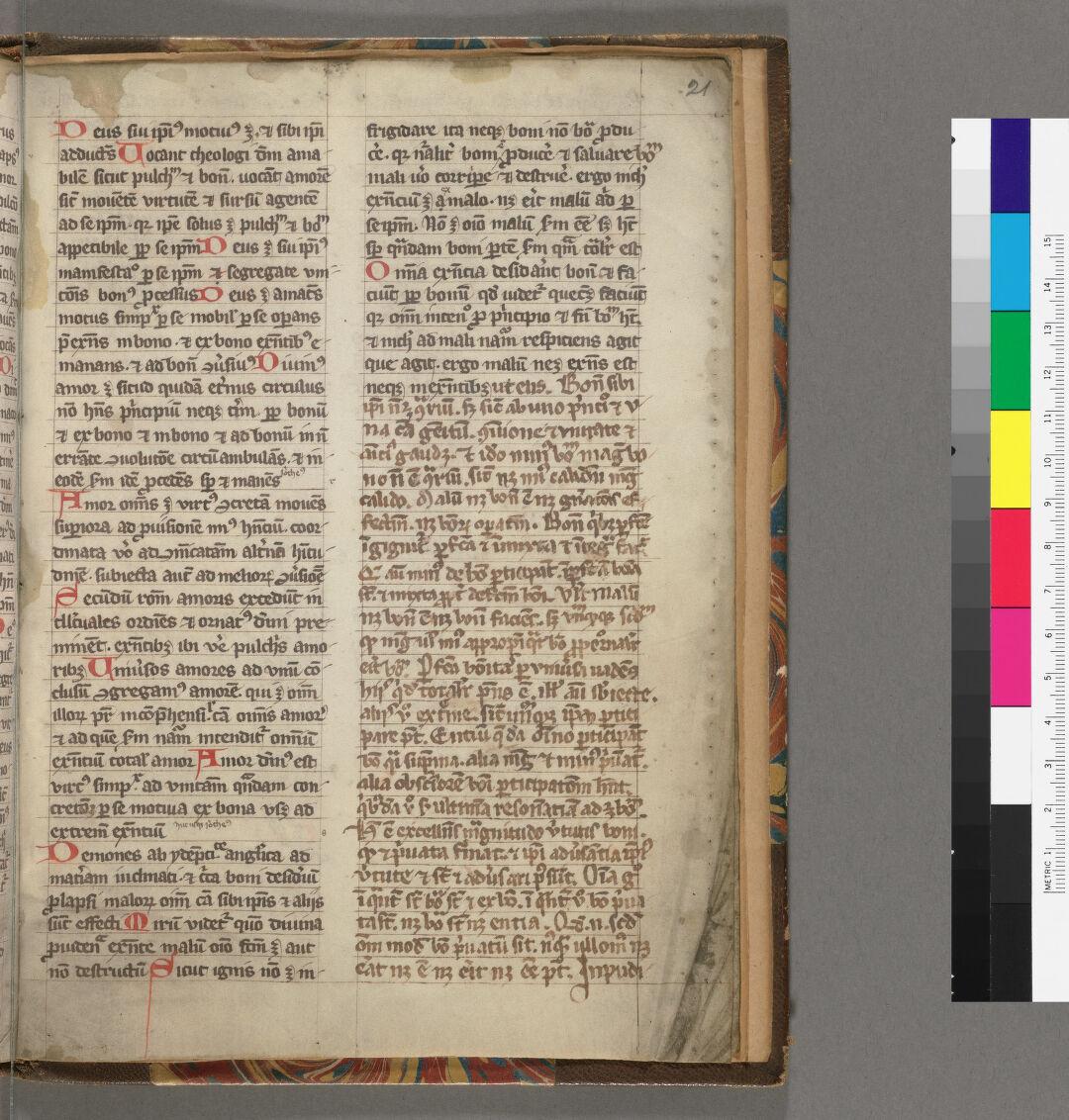 f. 21., (seq. 45)