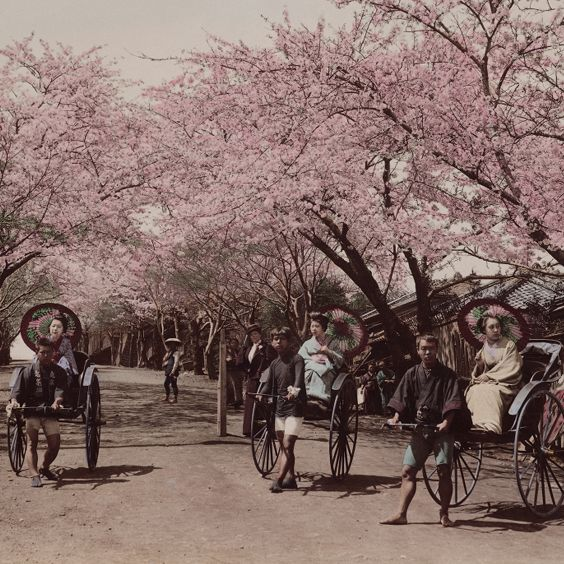 Japanese photographs of the Meiji period, vol. 1. Noge Hill at Yokohama (spring)
