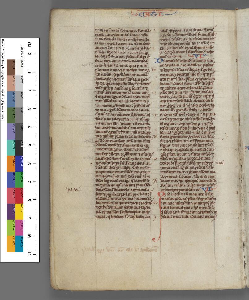 Leaf 7, verso (seq. 14)