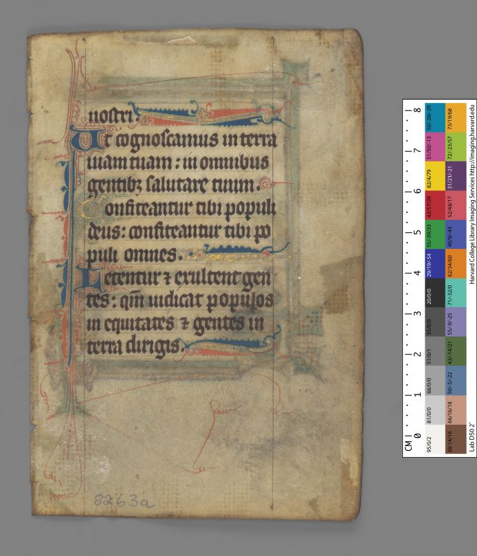 Harvard University, Houghton Library, earbm_ms_lat_446_recto