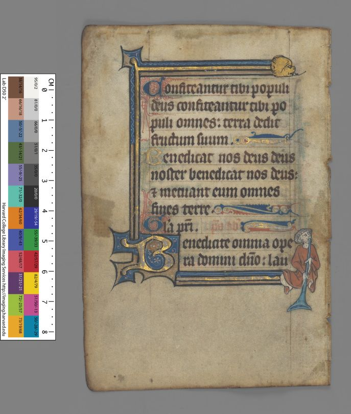 Harvard University, Houghton Library, earbm_ms_lat_446_verso