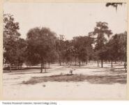G. A. Baker & Co. Spanish-American War photographs (Roosevelt R560.3.B17).