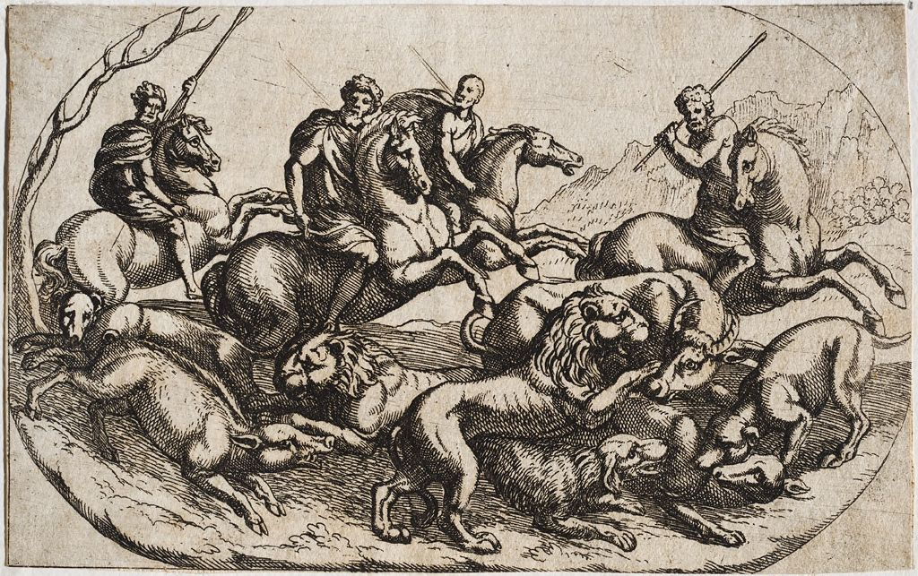 Hunt Of Various Animals