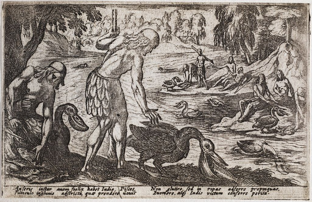 Hunters Using Pelicans To Capture Fish