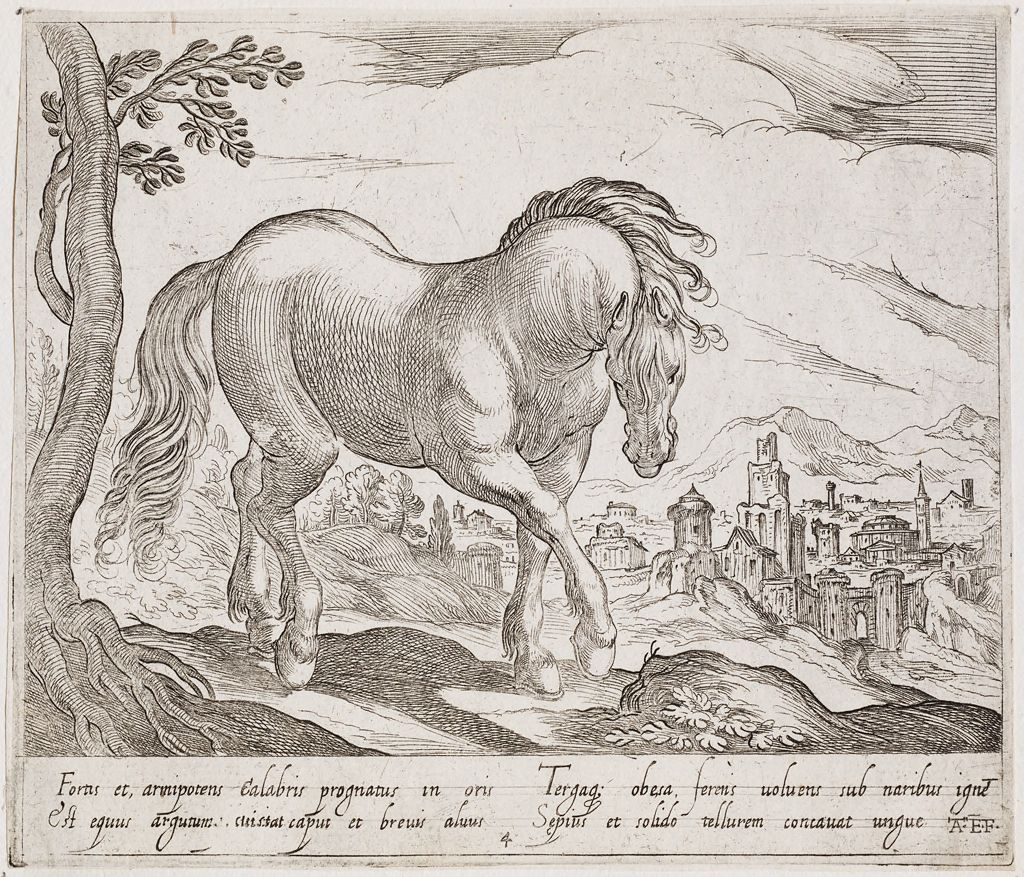 A Standing Horse Facing Right, With Head Lowered Toward The Viewer