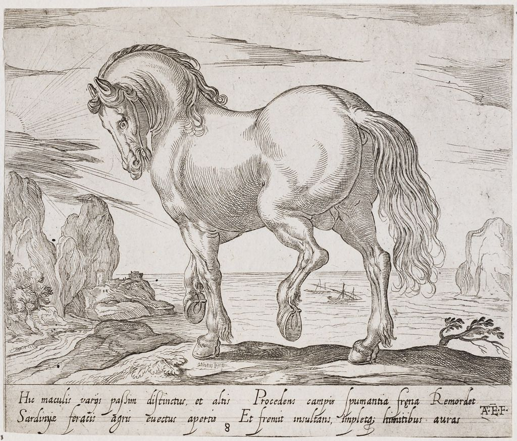 A Standing Horse Facing Left, Before A Seascape