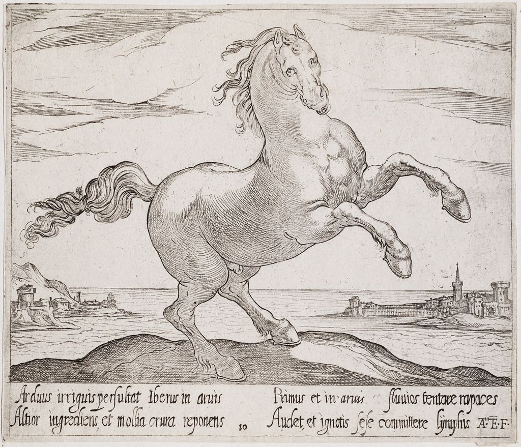 A Rearing Horse, Facing Right, Before A Seascape