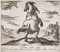 A Rearing Horse, Viewed from the Rear, Before a Seascape