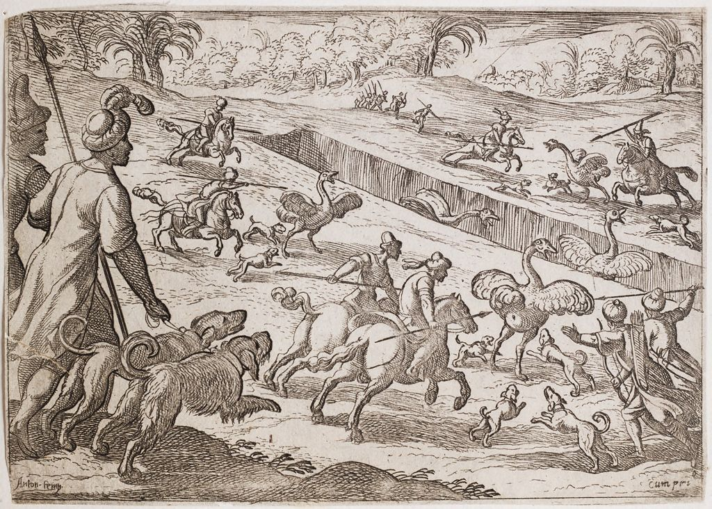 Hunters Chasing Ostriches Into A Pit