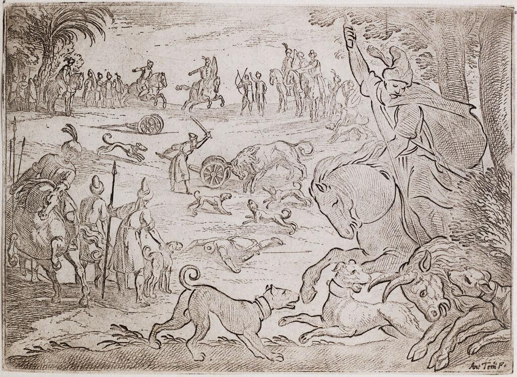 A Wild Bull Hunt