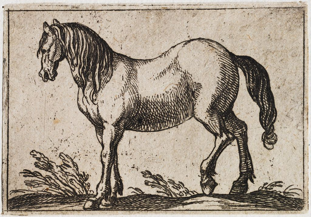 Standing Horse Facing Left