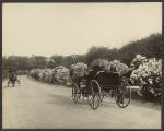 Lilacs, spring, carriage, 1908. olvwork175577