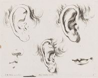 Three Ears, a Mouth, and a Nose and Mouth