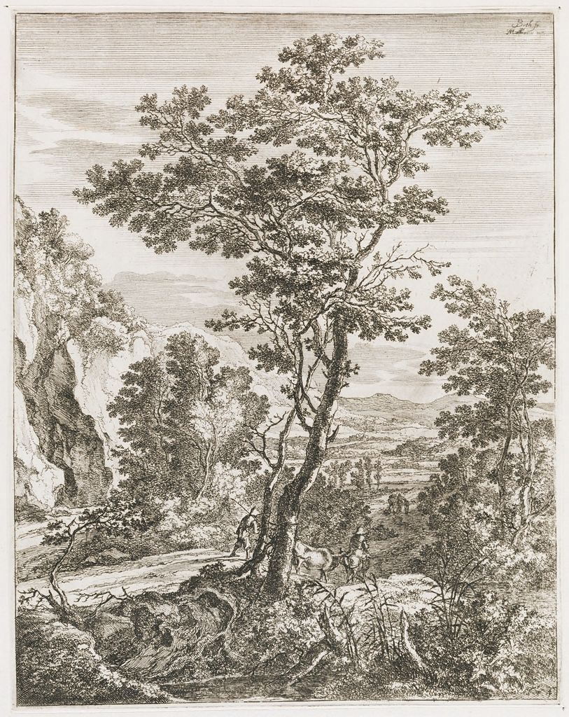 The Large Tree