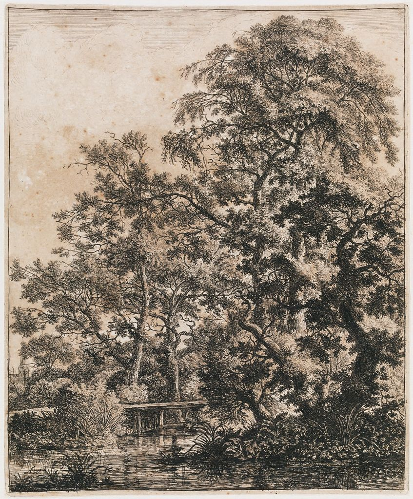 Landscape With A Small Wooden Bridge