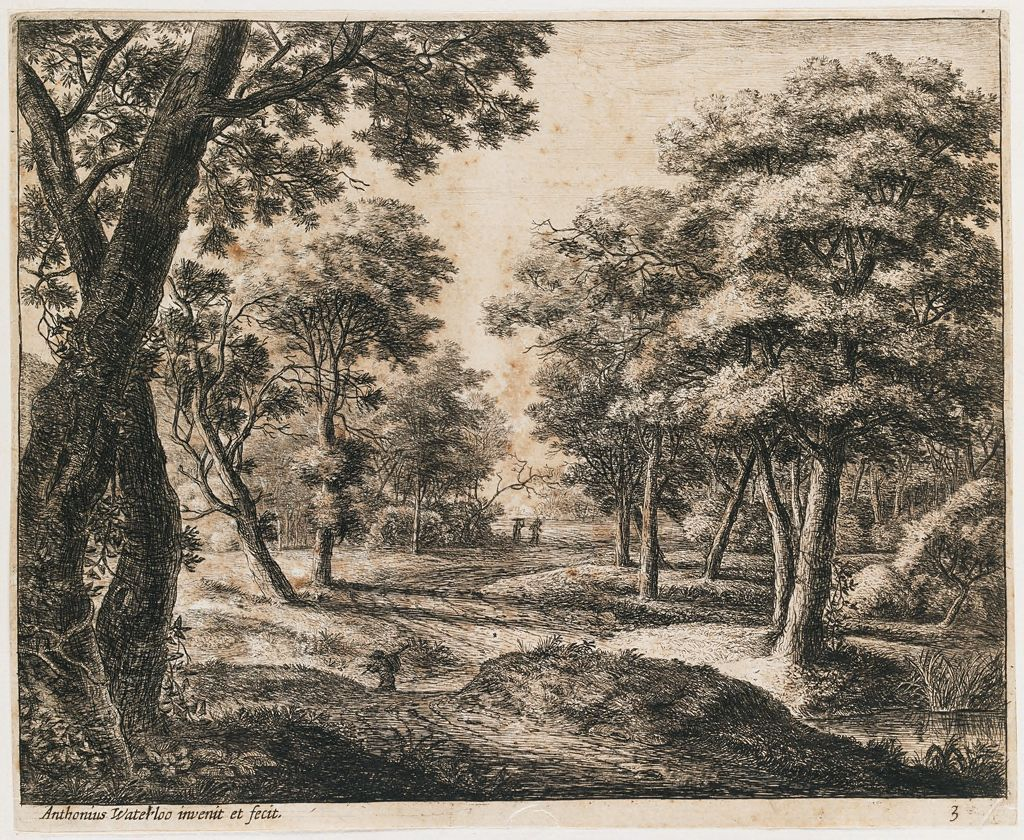 Landscape With A Path Through The Woods