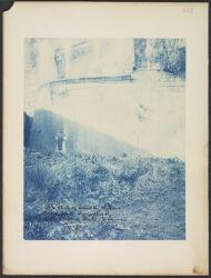 Album 2, 1894-1896 Digital Object