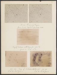 Nova Carinae Region [and] Reg. of Antares with Comet, [1898]