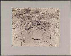 Inca Grave