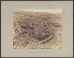 Ruins and Terraces, Coati
