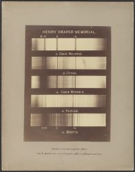 Henry Draper Memorial, Spectra of five typical stars. Each spectrum is enlarged with a cylindrical lens.
