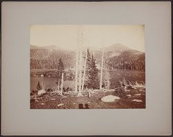 [View of trees and mountains]
