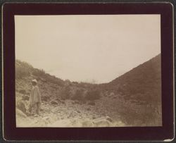 [View of landscape with individual in foreground]