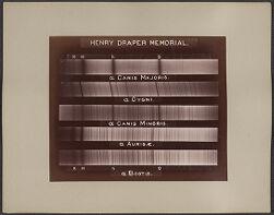 Henry Draper Memorial, a Canis Majoris, a Cygni, a Canis Minoris, a Aurigæ, a Bootis [spectra]