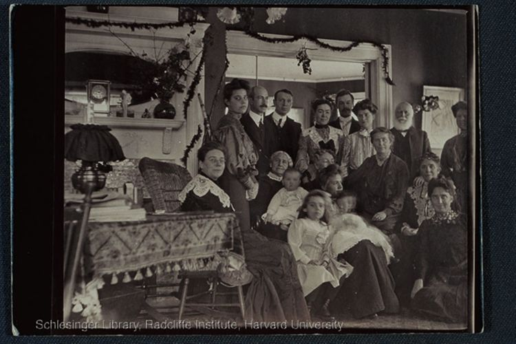 Group portrait, indoors, of the Blackwell family at Christmas. Back row, left to right: Anna Blackwell (Belden), Tom Jones, Clifford Brown, Agnes Blackwell (Jones)(?), Alfred Brooks Robinson, Frances Millette(?) , and George Washington Blackwell. In front of Clifford Brown is Antoinette Louisa Brown Blackwell; in front of George Washington Blackwell is Ethel Blackwell (Robinson) (left) and Emma Stone Lawrence Blackwell
