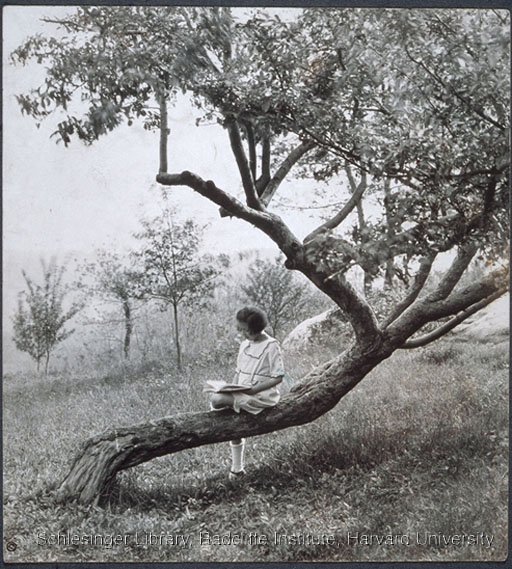 Nanette Beals seated outdoors on a tree trunk, reading a book.