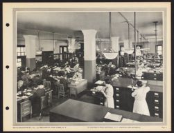 In district file division, N.Y.  Service department