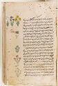 Manuscript Of The 'Aja'ib Al-Makhluqat (Wonders Of Creation) Of Qazwini, With 253 Paintings