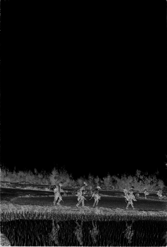 Untitled (Soldiers Walking Through Rice Paddies, Vietnam)