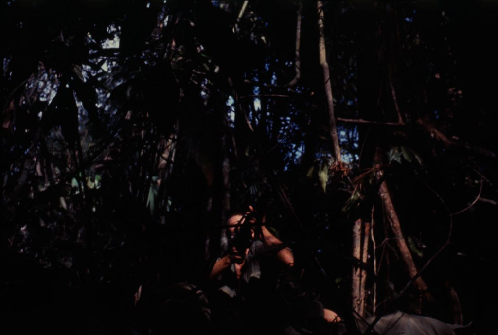 Untitled (Camouflaged Soldier Aiming Gun Into Trees During Fighting In Central Highlands Near Dak To, Vietnam)
