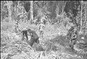 Untitled (Soldiers Patroling In Jungle Of Central Highlands Near Dak To, Vietnam)