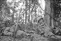 Untitled (Fighting In Central Highlands Near Dak To, Vietnam)