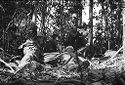 Untitled (Soldiers Providing Emergency Treatment For Member Of Unit Wounded During Fighting In Central Highlands Near Dak To, Vietnam)
