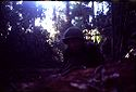 Untitled (Soldier Laying On Ground, On Watch In Jungle During Fighting In Central Highlands Near Dak To, Vietnam)