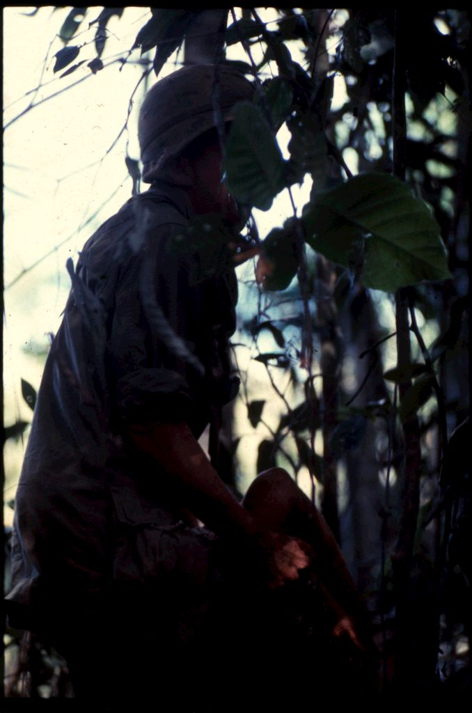 Untitled (Soldier Carrying Soldier Wounded During Fighting In Central Highlands Near Dak To, Vietnam)