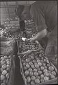 Untitled (Soldier Examining Bins Of Produce, Vietnam)