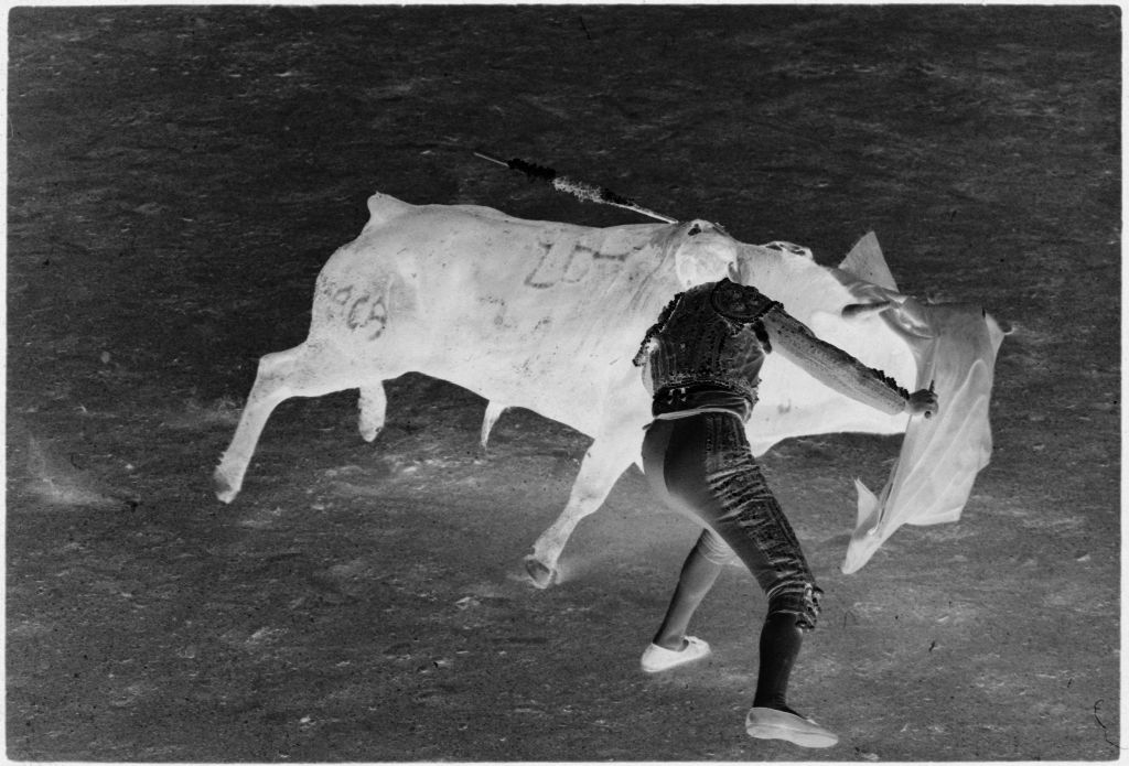 Untitled (Matador Drawing Cape Over Bull)