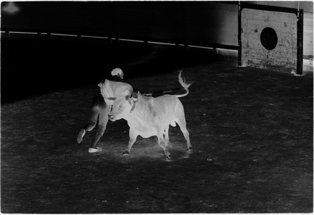 Untitled (Matador And Bull In Middle Of Bullring)