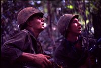 Untitled (Two Soldiers On Watch In Jungle Looking Up Into Trees During Fighting In Central Highlands Near Dak To, Vietnam)