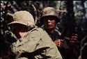 Untitled (Armed Soldiers On Watch During Fighting In Central Highlands Near Dak To, Vietnam)