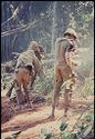 Untitled (Three Soldiers In Jungle Of Central Highlands Near Dak To, Vietnam)