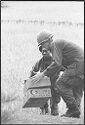 Untitled (Soldiers In Combat Attire Standing In A Field, Vietnam)