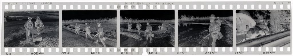 Untitled (Soldiers Walking Through Fields, Vietnam)