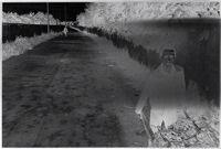 Untitled (Young Boy Walking Along Side Of Road Pushing Wheelbarrow)
